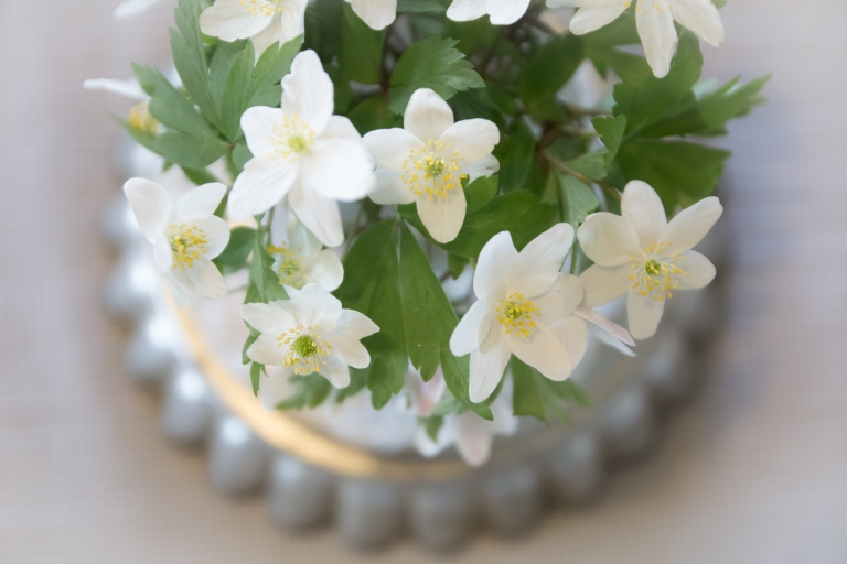 Kukkia_aidille_080516-39