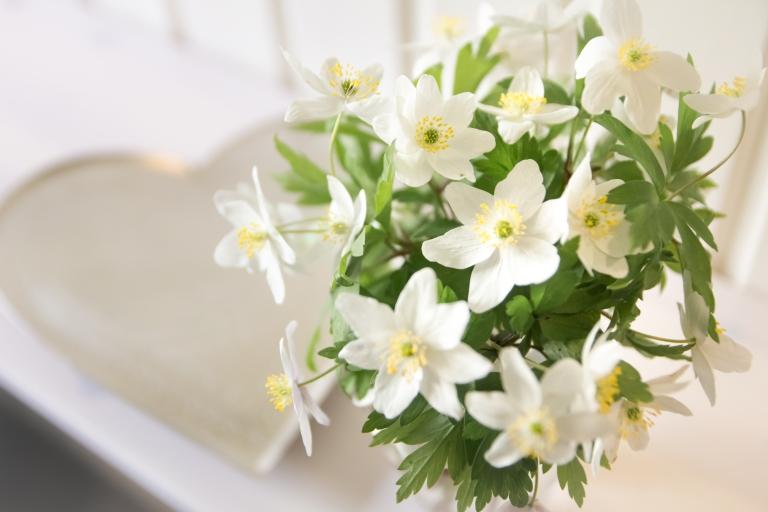 Kukkia_aidille_080516-53